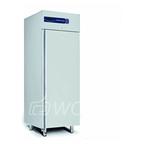 Шкаф морозильный Delizia  DL 1000 BT G
