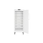 Шкаф морозильный GG 5210-20 001