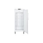 Шкаф морозильный GGv 5010